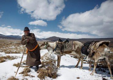 Bộ tộc chăn tuần lộc cuối cùng ở Mông Cổ khó giữ bản sắc
