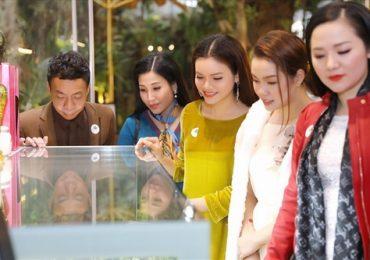 Sao Việt nô nức dự triển lãm trưng bày 'Báu vật đại ngàn'