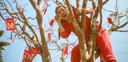 Về quê ăn tết, 'Ngọc nữ bolero' Tố My gây choáng khi trèo lên cây mai tiền tỉ