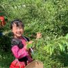 Mina Phạm – Cô bé 6 tuổi lại 'gây bão' vì nói tiếng Anh 'chuẩn không cần chỉnh'