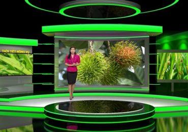 'Thời tiết nông vụ' mang niềm vui cho bà con nông dân
