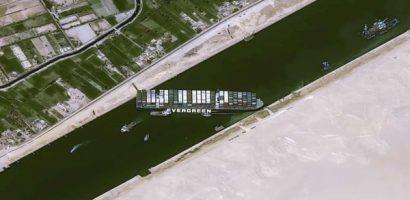 Cảnh báo nguy cơ gia súc đói, chết trên 20 tàu kẹt ở kênh đào Suez